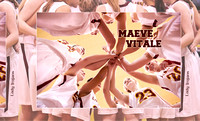 BASKETBALL VITALE BOOK